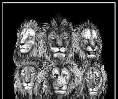 手绘丨坏男孩雄狮联盟